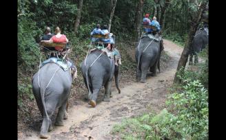 Sights & Scenes - Thailand